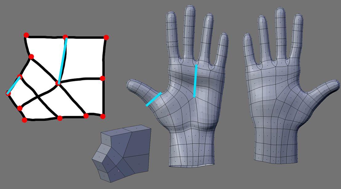 Blender 3d Hand ~ Organic modeling techniques blendernation