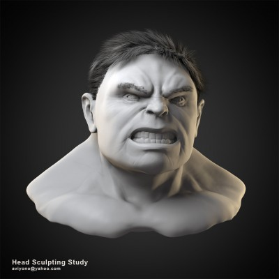 Head Sculpting Study images