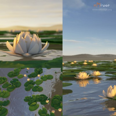 emirage_white_lotus_square