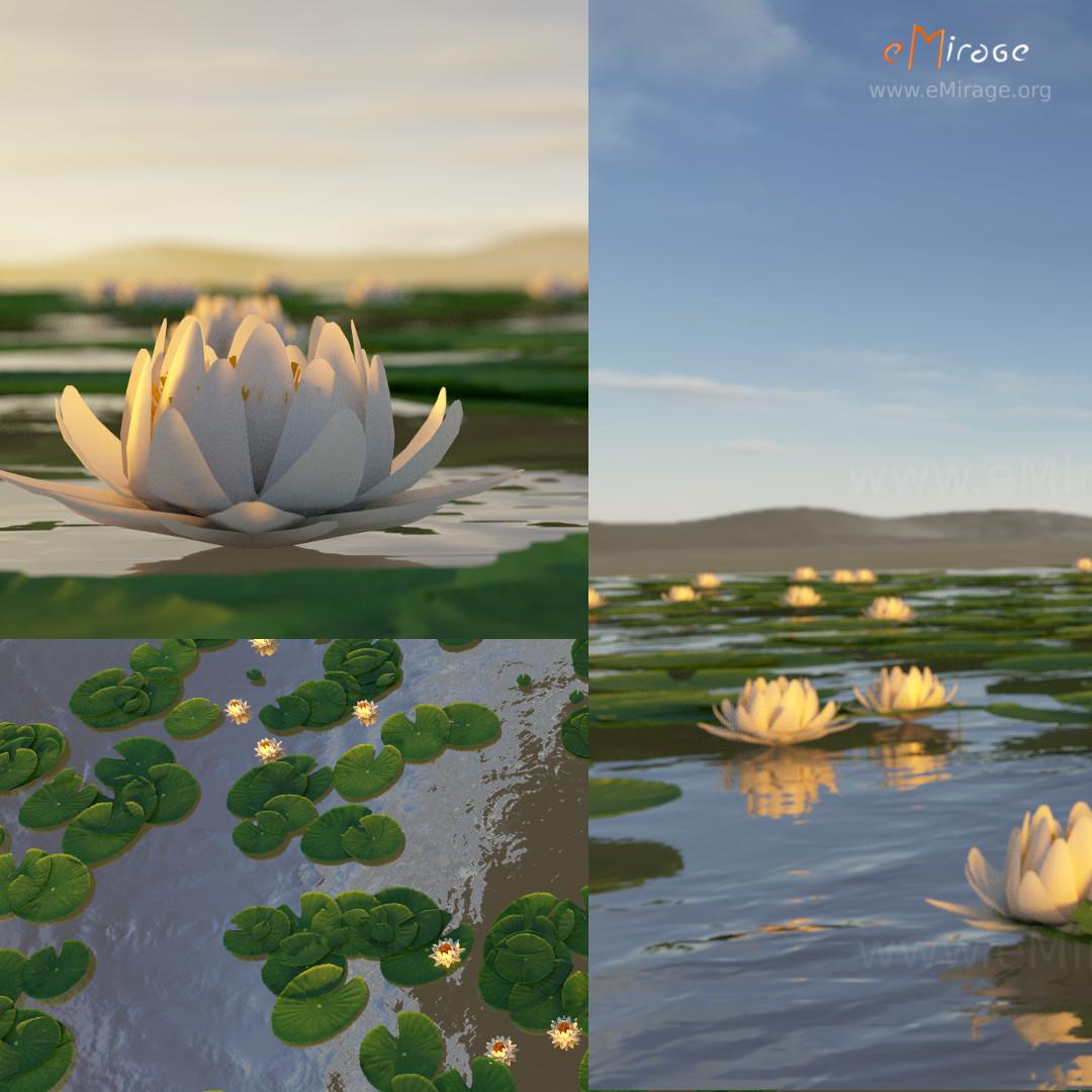 Download: White Lotus ...