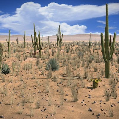 bmf_desert_scene_v6_composited_medium_03f9483e4f9db0a54505712e6f27db54565e34e1