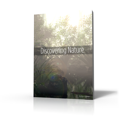 ebook-design-2-non-transparent-downsized