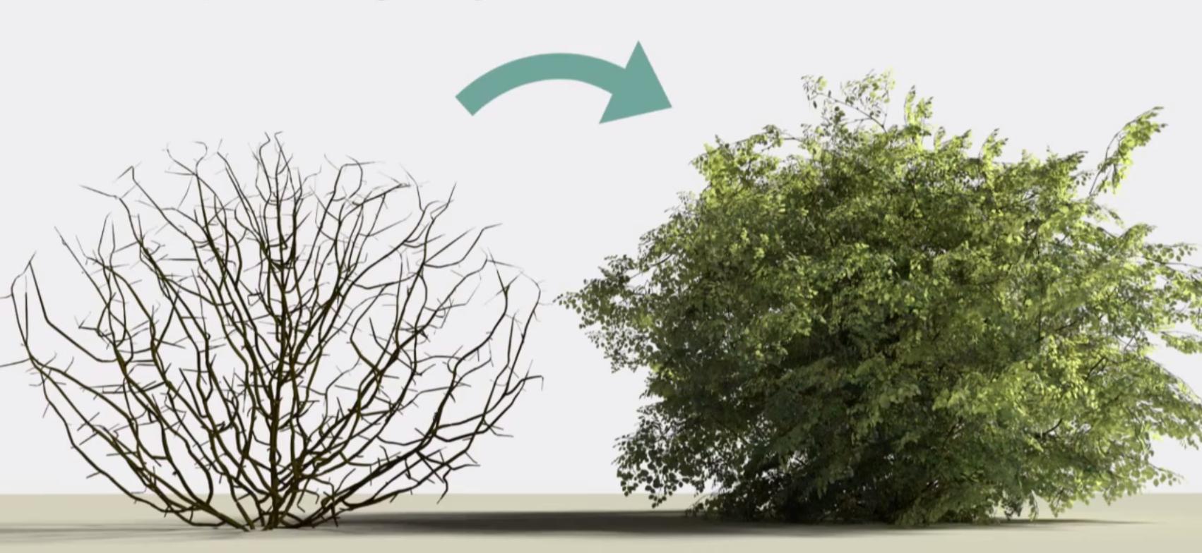 Modeling A Shrub Adding Leaves Blendernation