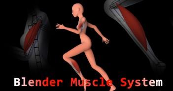 muscle Thumbnail