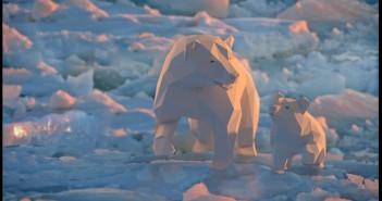 nita-ravalji-polar-bear