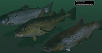 fish_cropped
