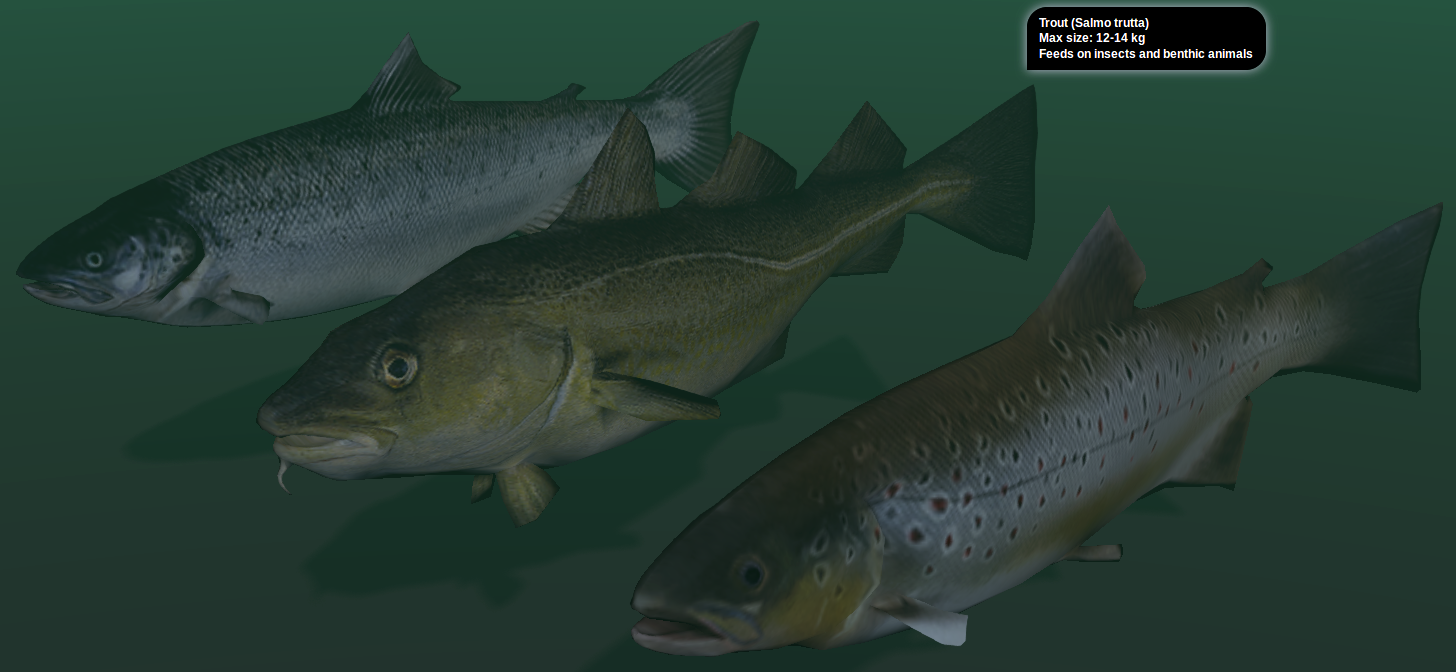 Three blend4web demos blendernation for Fish in a blender