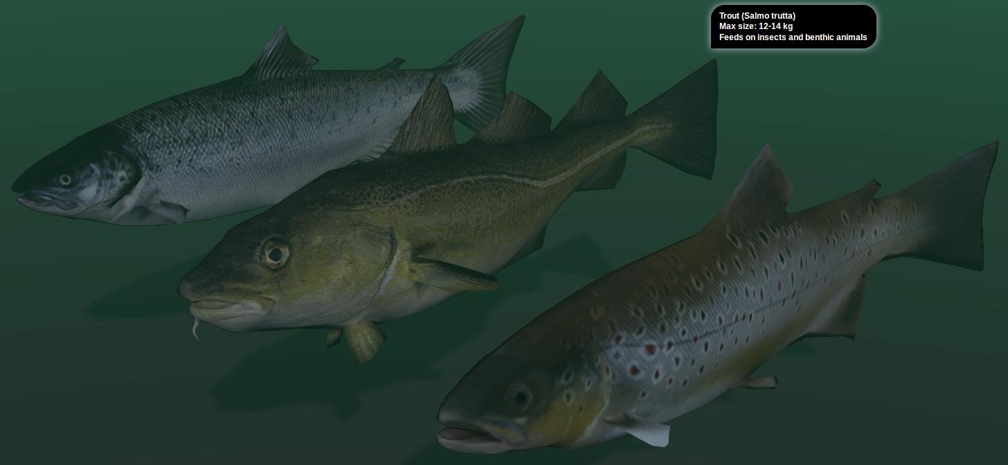 Three blend4web demos blendernation for Fish in a blender