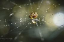 stigma_breakdown_title