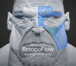 RetopoFlow_v1.1.0_feature01