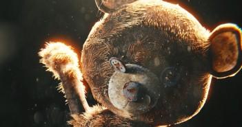 teddy cropped