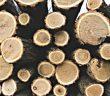 Logging, get it? :)