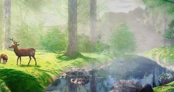 in_the_forest_by_ikyuvaliantvalentine-d9vrcvf-Header