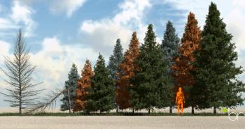 spruce-green1-bn-890x445