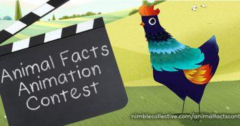 Nimble_Contest_BlenderNation