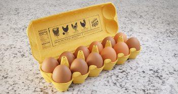 egg product header