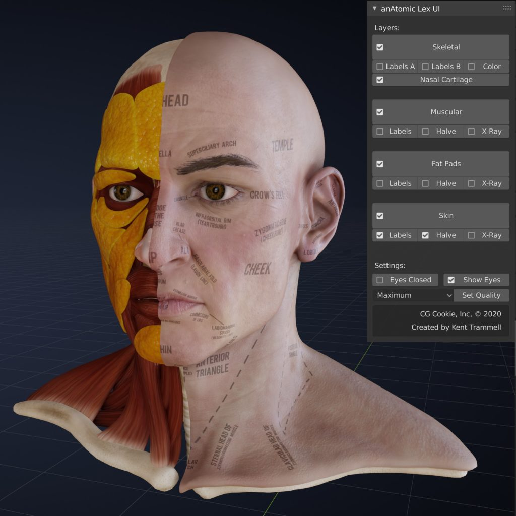 Each layer of the head comes with switchable labels and modes